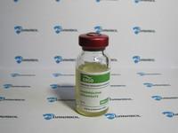 Нандролон деканоат ERGO 300 (300 мг/10мл Бельгия)