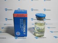 Тестостерон пропионат Radjay (100мг/10ml Индия)